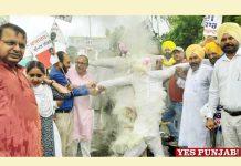 AAP burns effigies Modi Shah against BSF jurisdiction