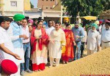 AAP leaders visit Mandis