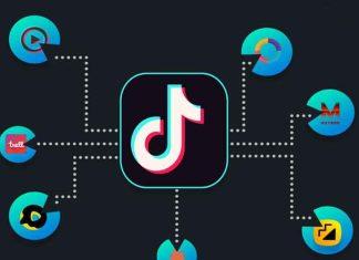 TikTok Indian short video app